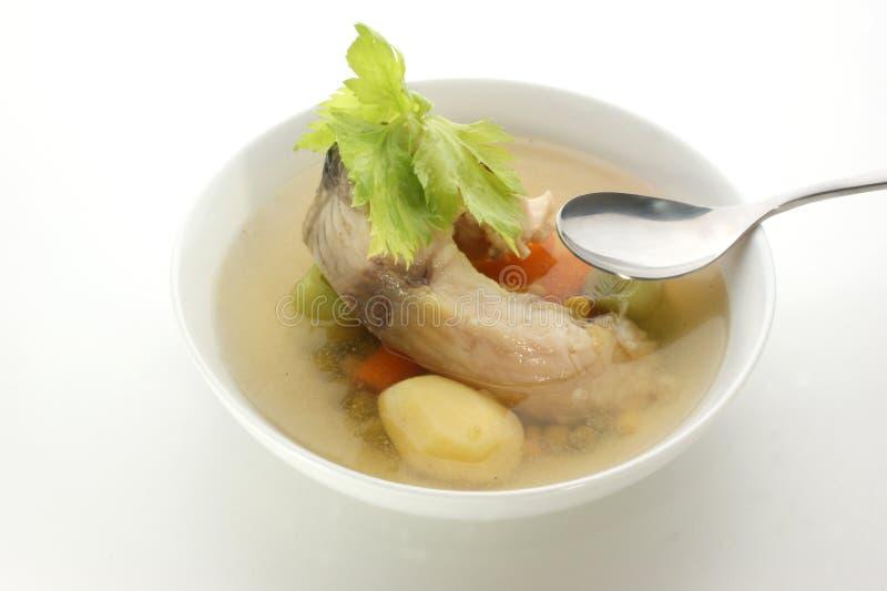 nya organiska soupgrönsaker för fisk fotografering för bildbyråer