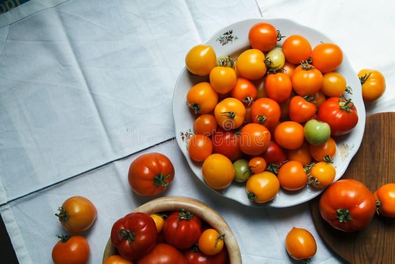 Nya organiska tomater av olika färger arkivbild