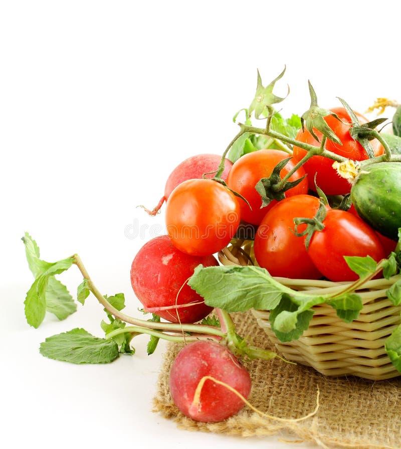 Nya organiska tomater och gurkor i en korg arkivbilder