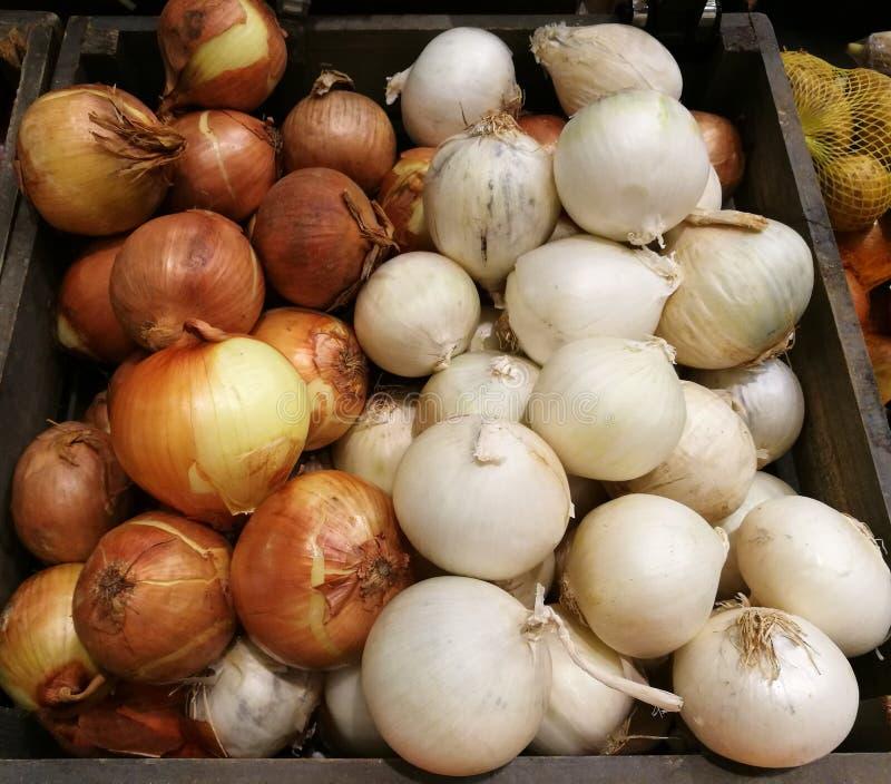 Nya organiska vit- och bruntlökkulor bland många lökbakgrund i träkorgen i supermarket Högen av löken rotar in arkivfoton