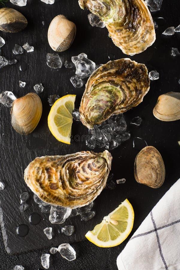 Nya ostron och musslor på en svart stenplatta royaltyfri foto