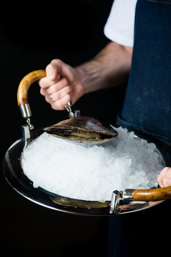 Nya ostron på is på försilvrar uppläggningsfatet fotografering för bildbyråer