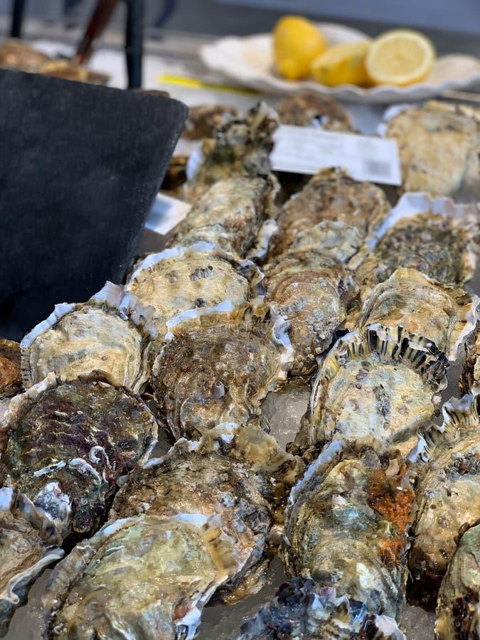 Nya ostron p? en fiskmarknad arkivfoton