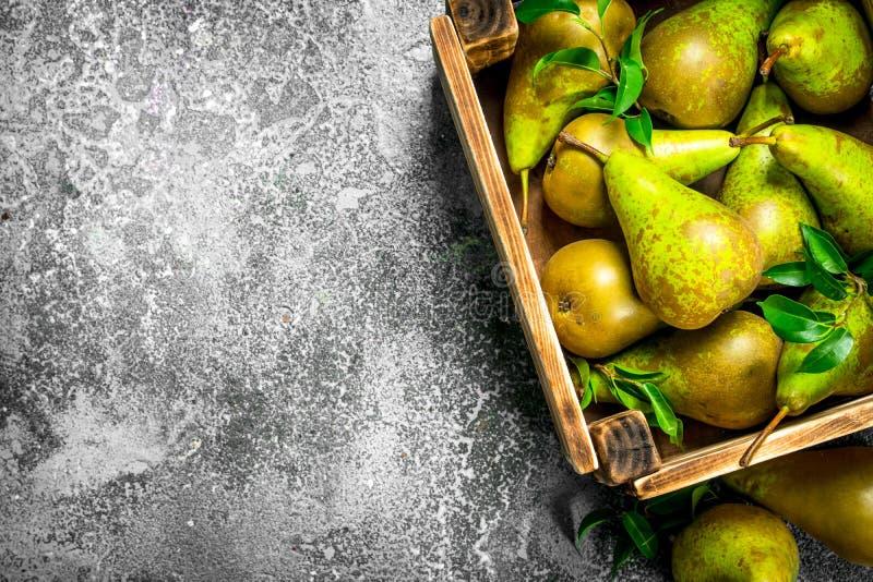 Nya päron i en ask royaltyfria bilder
