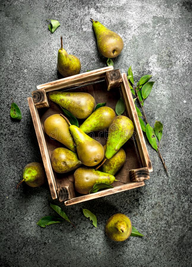 Nya päron i en ask arkivbild