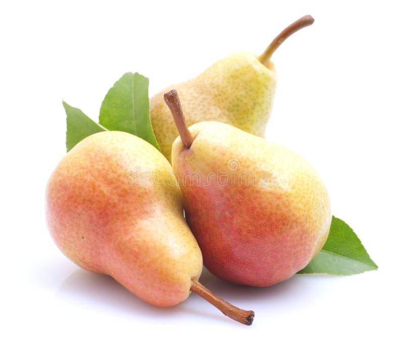 nya pears royaltyfria bilder