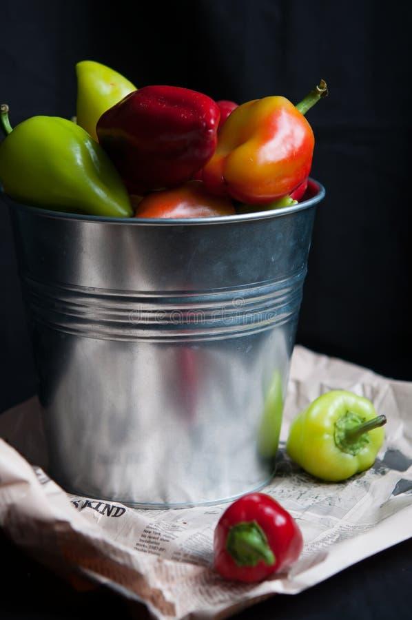 Nya peppar i hink arkivbilder
