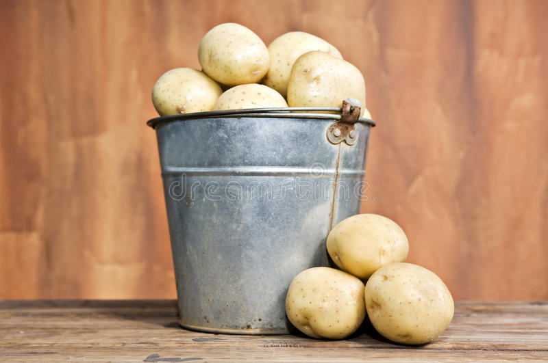 nya potatisar för hink fotografering för bildbyråer