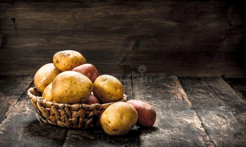 nya potatisar för korg royaltyfri foto