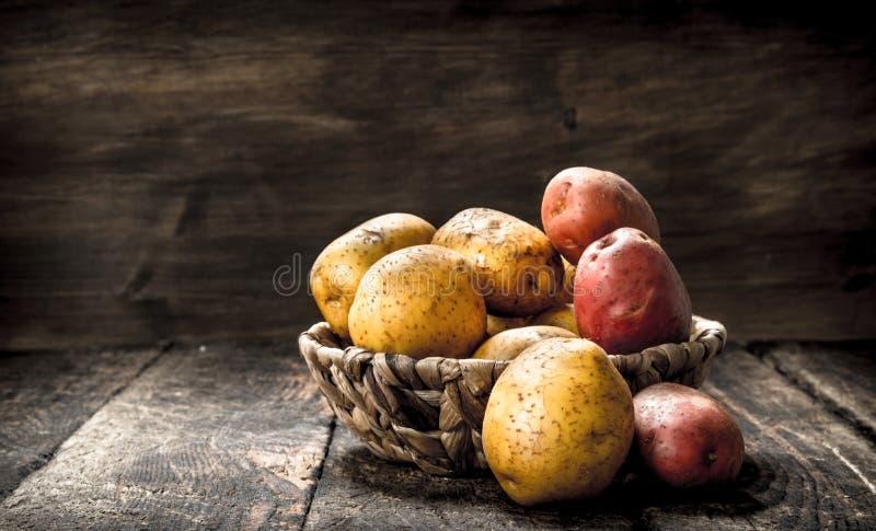 nya potatisar för korg arkivbilder