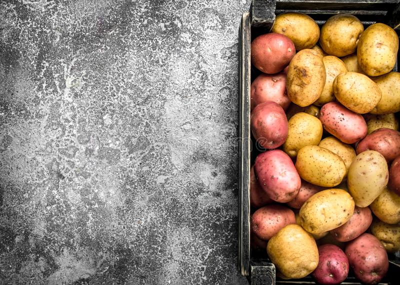 Nya potatisar i en ask arkivbilder