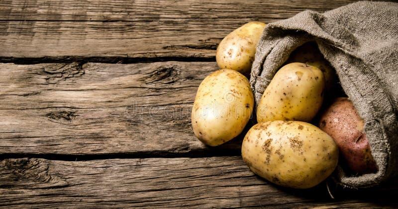 Nya potatisar i en gammal säck på träbakgrund frigör stället för text royaltyfri bild