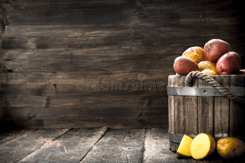 Nya potatisar i en trähink fotografering för bildbyråer