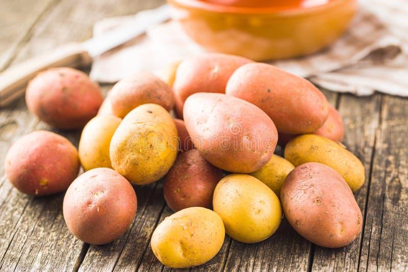 nya potatisar r? potatisar arkivfoton