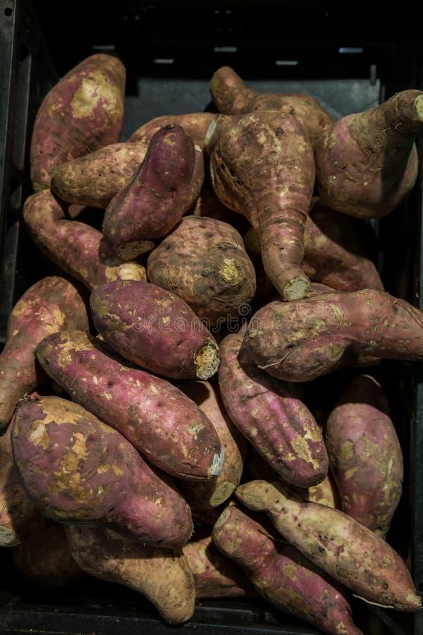 Nya purpurfärgade sötpotatisar traver Sötpotatis som är till salu i lokal marknad cofred sötpotatisbakgrund, hög av den röda elle arkivbilder