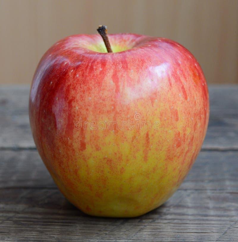 Nya röda Apple royaltyfri foto