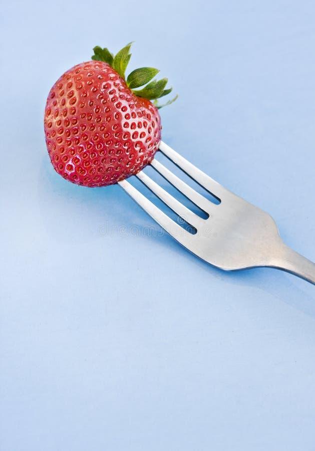nya röda jordgubbar för gaffel fotografering för bildbyråer