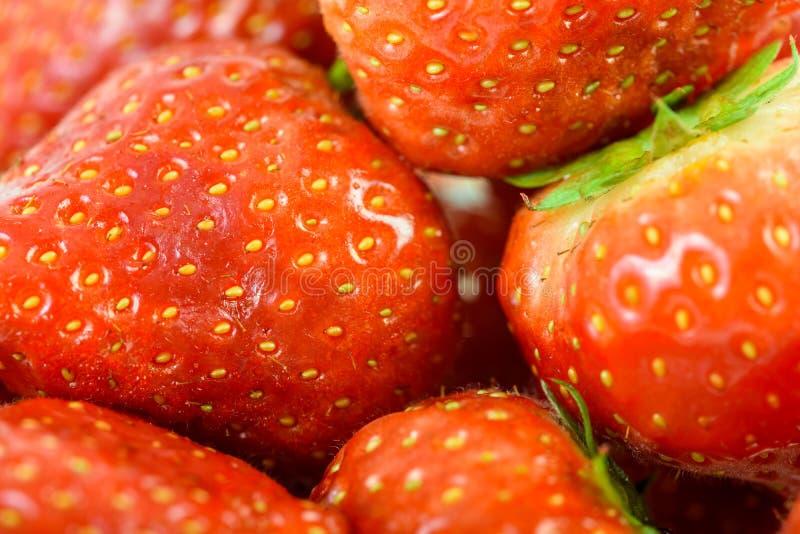 Nya röda jordgubbar i fruktmarknad royaltyfri fotografi