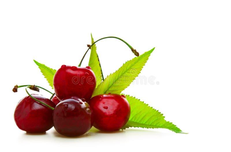 Nya röda körsbär. arkivfoton