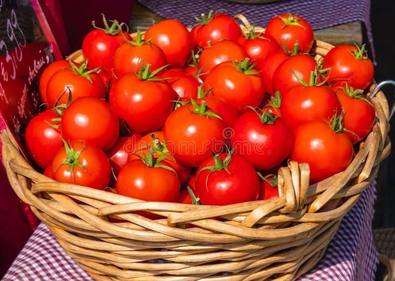 Nya röda mogna läckra tomater i en korg på försäljning på marknad i solljuset royaltyfria bilder