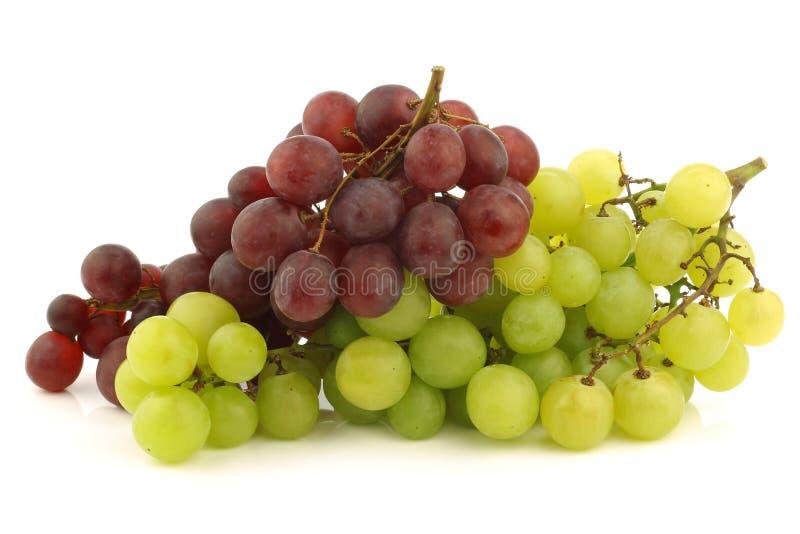 Nya röda och vita seedless druvor på vinen royaltyfri foto