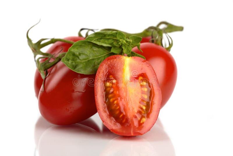 nya roma tomater arkivbilder