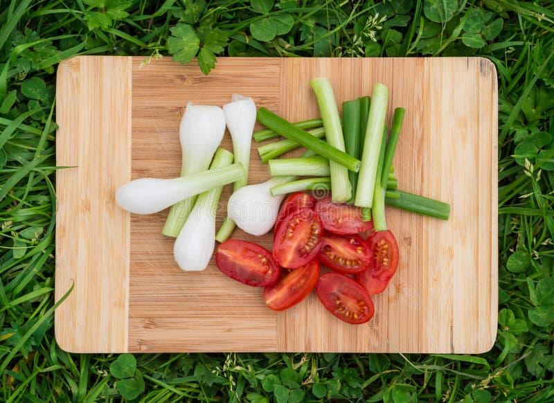 Nya salladslökar och körsbärsröda tomater på den gamla träskärbrädan, closeupmat, sköt utomhus royaltyfri foto