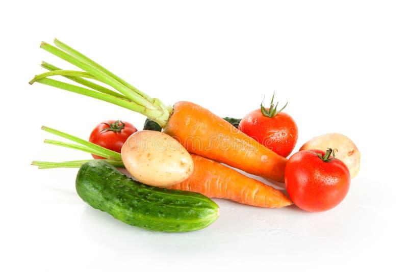nya sköt våta studiogrönsaker arkivbild