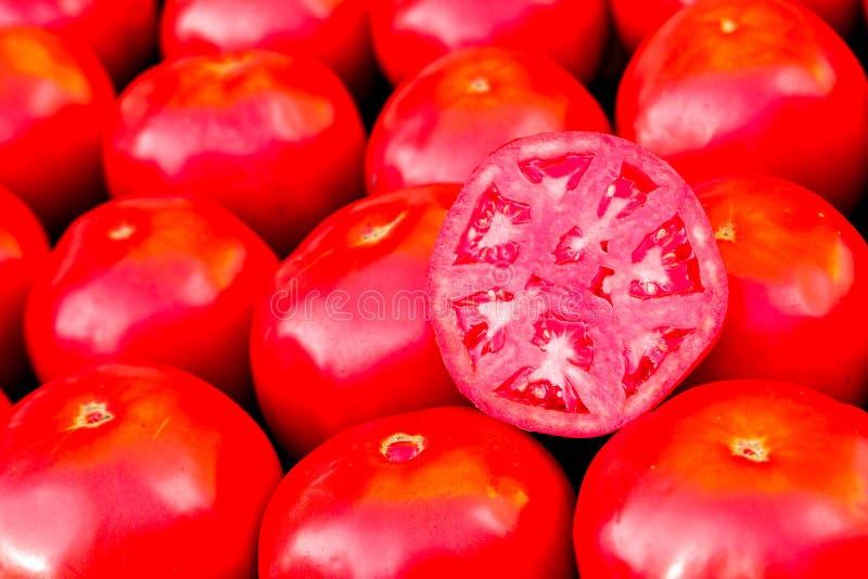 Nya stora röda tomater från en bondemarknad royaltyfri bild