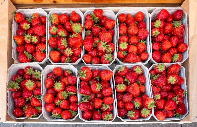 Nya sunda mogna jordgubbar på försäljning i små askar Top besk?dar Läcker vårfrukt royaltyfria bilder