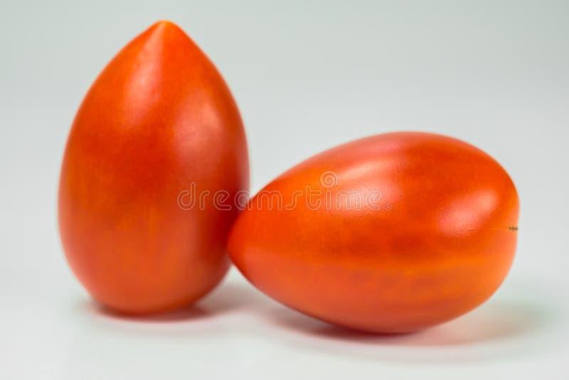 Nya tomater arkivfoton