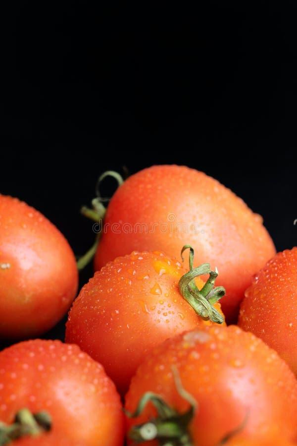 Download Nya tomater arkivfoto. Bild av litet, banta, rått, refreshment - 37349042