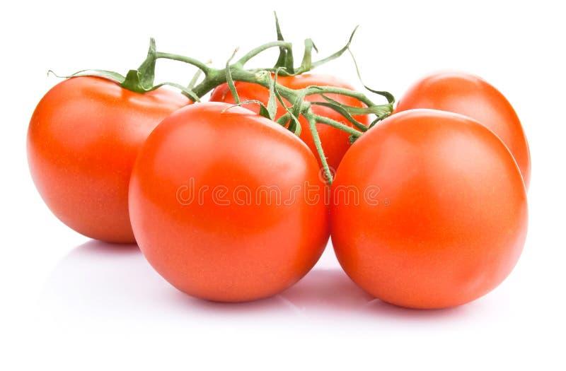 nya tomater för Cherry arkivfoton