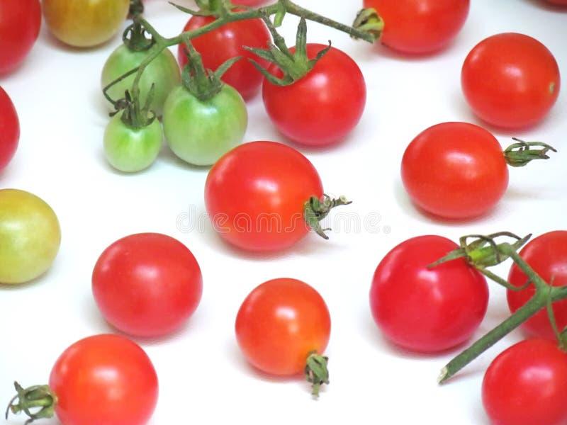 Nya tomater i en variation av färger arkivfoto