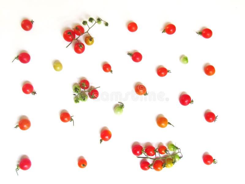Nya tomater i en variation av färger för tapet royaltyfria bilder