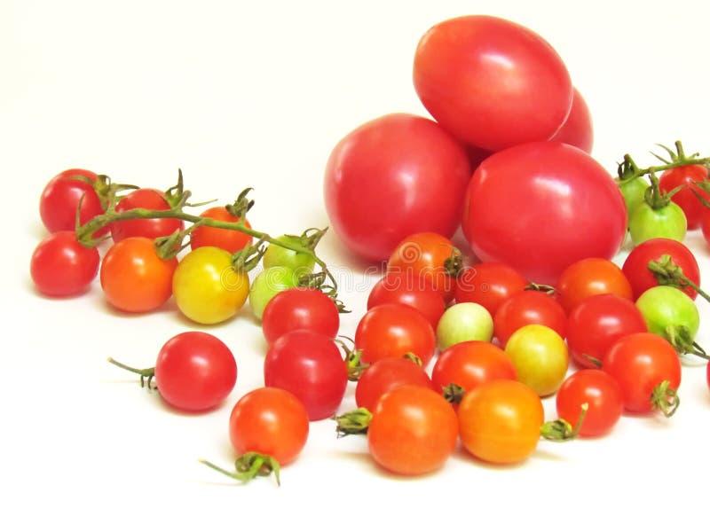 Nya tomater i en variation av färger och format royaltyfria bilder