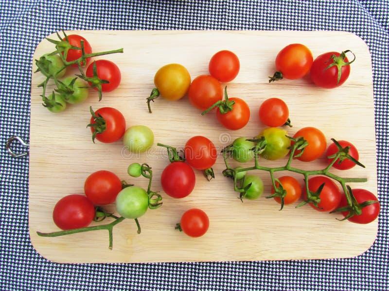 Nya tomater i en variation av färger och format som förläggas på ett träbräde arkivbilder