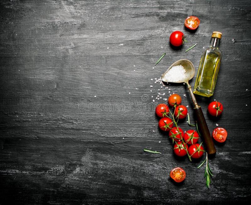 Nya tomater med olivolja och en sked av salt royaltyfri bild