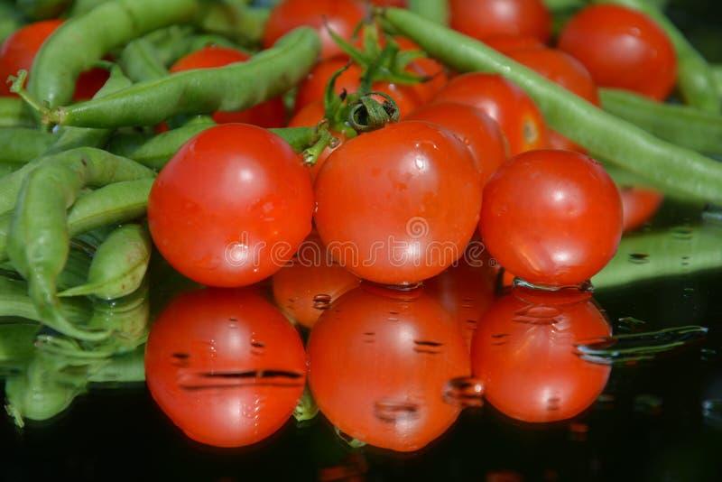 Nya tomater och ärtor royaltyfria bilder