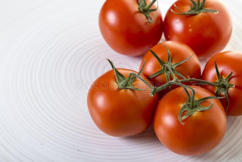 Nya tomater på det vita uppläggningsfatet royaltyfri fotografi