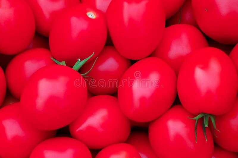 Nya tomater som är till salu på gatamarknad, arkivbild