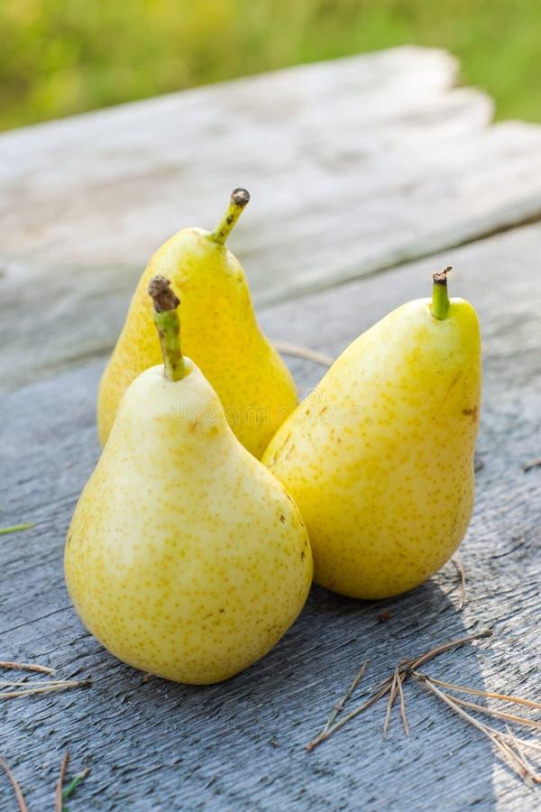 Nya tre och saftiga päron på trätabellen, DOF royaltyfri bild