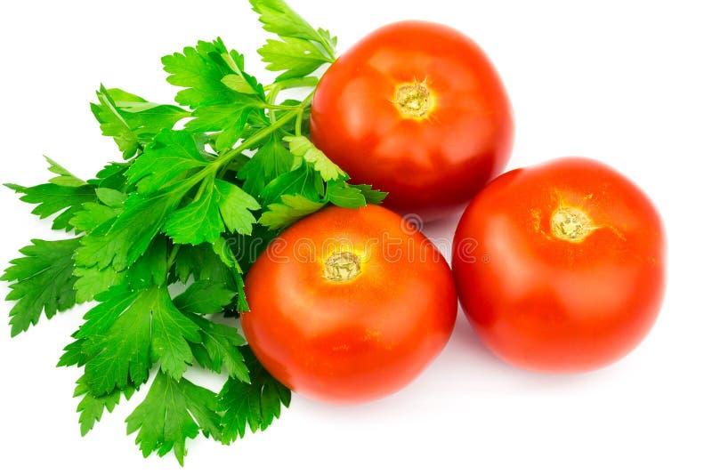 Nya tre röda tomater och persilja som isoleras på vit bakgrund arkivfoto