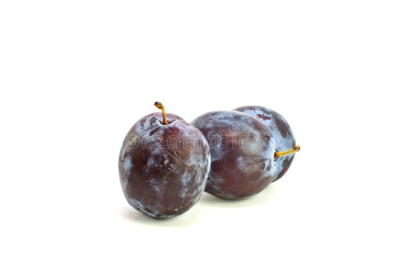 Download Nya två plommoner arkivfoto. Bild av sugary, purpurt - 27284362