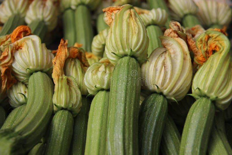 Nya unga gr?na zucchinier och blommor royaltyfri foto
