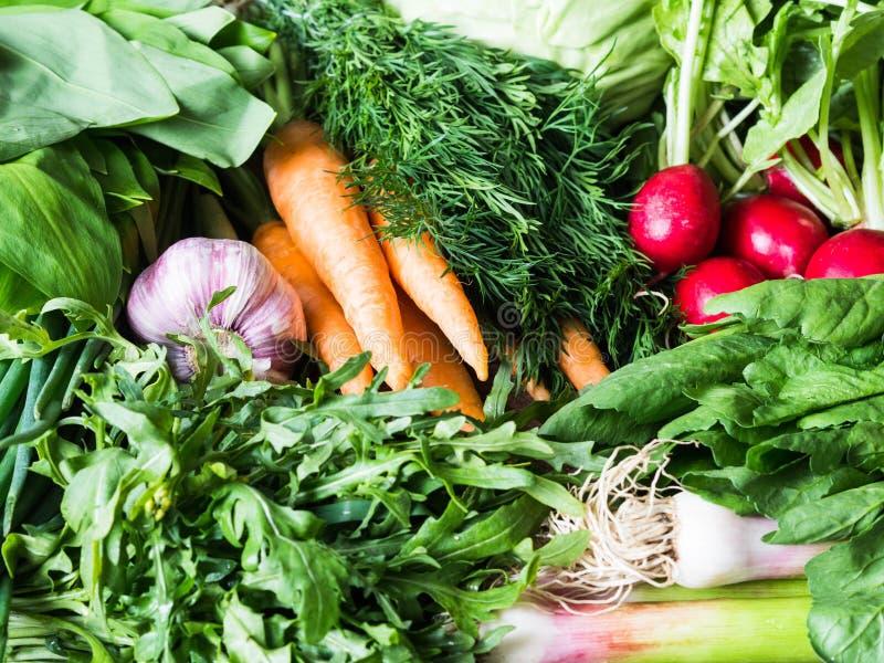 Nya vårgrönsaker och örter - morötter, ramson, rädisa, dill, vitlök, arugula, salladslökbakgrund royaltyfri bild