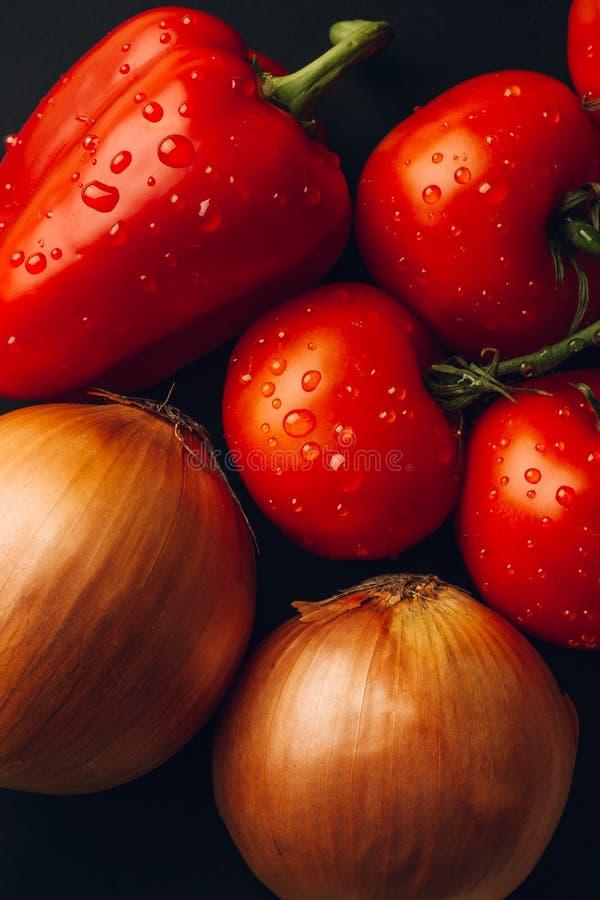Nya våta tomater i droppar av vatten, guld- lök, spansk peppar på mörk bakgrund, bästa sikt royaltyfri fotografi