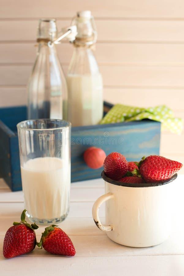 Nya valda strawberrys med exponeringsglas av mjölka på vit träbakgrund royaltyfria foton