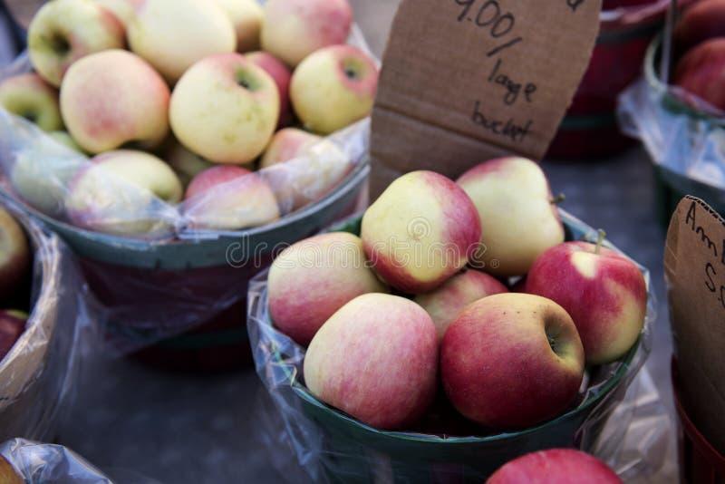 Nya veggies och frukter royaltyfria foton