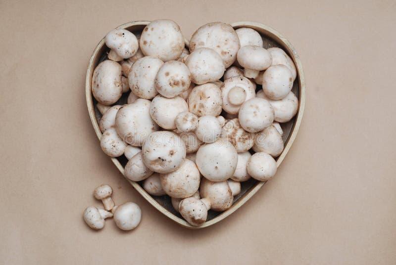 Nya vita naturliga smutsiga Champignons plocka svamp i trähjärtaask Sund ecomat royaltyfria foton